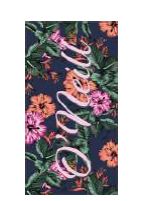 BW O'NEILL BEACH TOWEL BLUE PINK